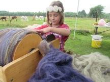 Carding alpaca fiber.